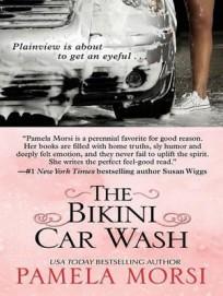 the-bikini-car-wash